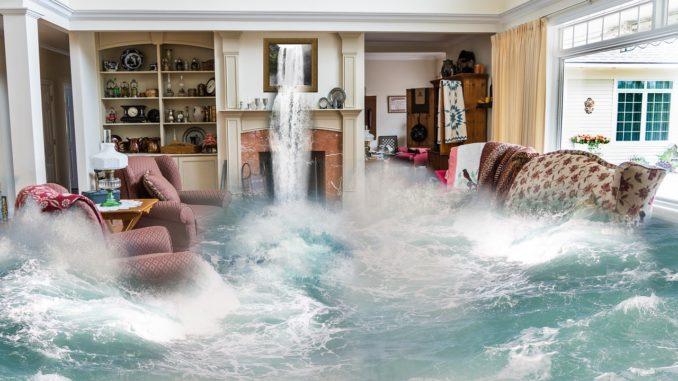 Feuchte Wohnung mit Raumluftentfeuchter behandeln